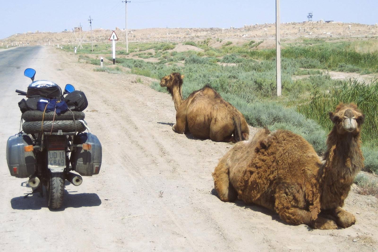 Joyside Jeio passaggio di confine Turkmenistan Uzbekistan